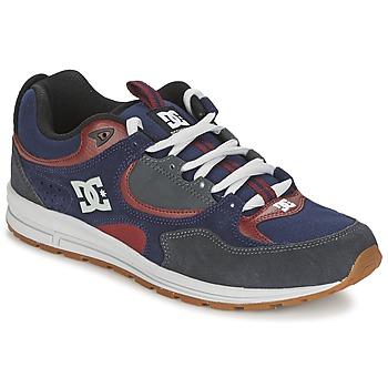 Cipők Férfi Deszkás cipők DC Shoes KALIS LITE Tengerész / Szürke
