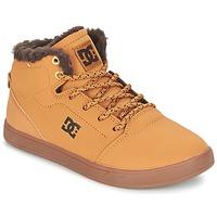 Shoes Gyerek Magas szárú edzőcipők DC Shoes CRISIS HIGH WNT B SHOE WD4 Búza / Csokoládé
