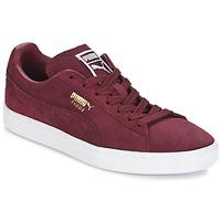 Cipők Rövid szárú edzőcipők Puma SUEDE CLASSIC + Bordó