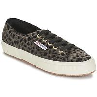 Cipők Női Rövid szárú edzőcipők Superga 2750 LEOPARDHORSEW Leopárd