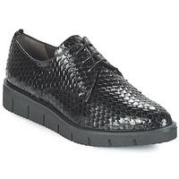 Cipők Női Oxford cipők Perlato MEQUINI Fekete
