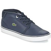 Shoes Fiú Rövid szárú edzőcipők Lacoste Ampthill 316 2 Kék