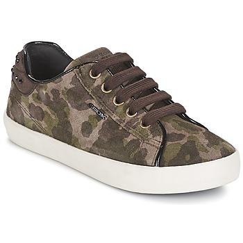 Cipők Lány Rövid szárú edzőcipők Geox KIWI GIRL Zöld
