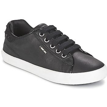 Cipők Lány Rövid szárú edzőcipők Geox KIWI GIRL Fekete