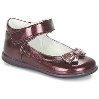 Shoes Lány Balerina cipők / babák Citrouille et Compagnie FRIZZY Bordó