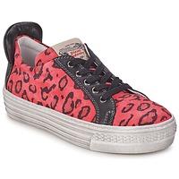 Cipők Lány Rövid szárú edzőcipők Diesel JAKID Rózsaszín / Leopárd