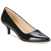 Cipők Női Félcipők Paco Gil UTIEL Fekete