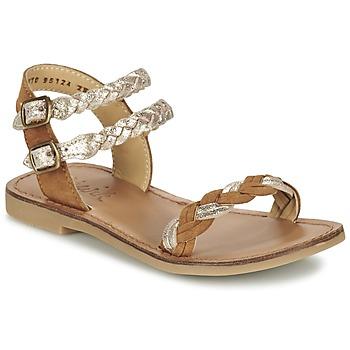 Shoes Lány Szandálok / Saruk Shwik LAZAR WOWO Teve / Arany