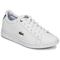 Cipők Gyerek Rövid szárú edzőcipők Lacoste CARNABY EVO BL 1 Fehér