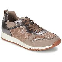 Cipők Női Rövid szárú edzőcipők Tamaris ROUFO Bors