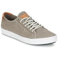 Cipők Férfi Rövid szárú edzőcipők Blackstone NM95 Szürke