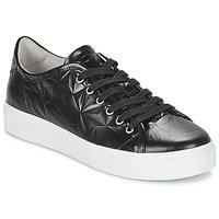 Cipők Női Rövid szárú edzőcipők Blackstone NL34 Fekete