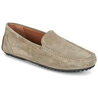 Shoes Férfi Mokkaszínek Paul & Joe CARL Bézs