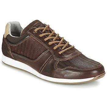 Cipők Férfi Rövid szárú edzőcipők Bullboxer IJINOTE Barna