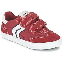 Shoes Fiú Rövid szárú edzőcipők Geox J KIWI B. M Piros / Tengerész