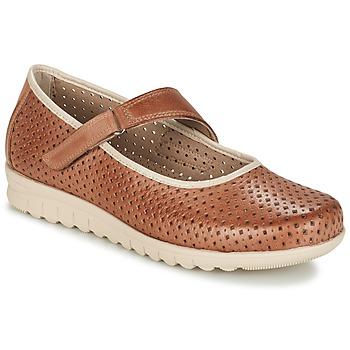 Cipők Női Balerina cipők / babák Pitillos FARCO Barna