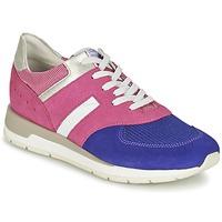 Cipők Női Rövid szárú edzőcipők Geox SHAHIRA A Rózsaszín / Lila