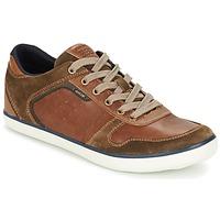Shoes Férfi Rövid szárú edzőcipők Geox BOX C Barna