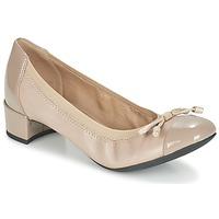 Cipők Női Félcipők Geox D CAREY A Tópszínű