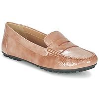 Cipők Női Mokkaszínek Geox D LEELYAN B Bézs