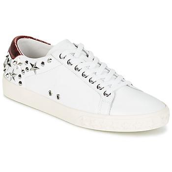 Cipők Női Rövid szárú edzőcipők Ash DAZED Fehér