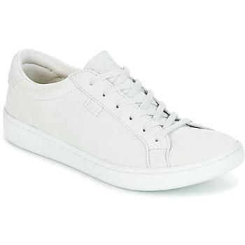 Cipők Női Rövid szárú edzőcipők Keds ACE MONO Gleccser / Szürke