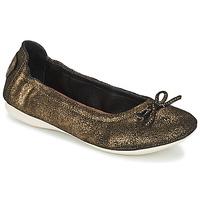 Cipők Női Balerina cipők / babák PLDM by Palladium MOMBASA Arany / Fekete