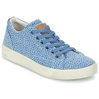 Cipők Női Rövid szárú edzőcipők PLDM by Palladium TILA Kék