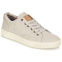 Cipők Női Rövid szárú edzőcipők PLDM by Palladium TILA Bézs