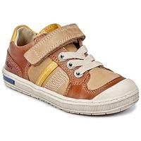 Cipők Fiú Rövid szárú edzőcipők Kickers IGORLOW Teve