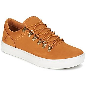 Cipők Férfi Rövid szárú edzőcipők Timberland ADV 2.0 CUPSOLE ALPINE OX Barna