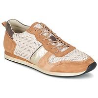 Cipők Női Rövid szárú edzőcipők Bocage LANNY Konyak / Fehér