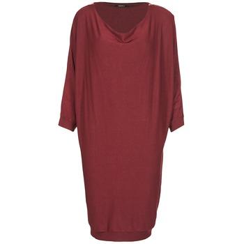 Ruhák Női Rövid ruhák Kookaï BLANDI Bordó