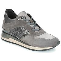 Cipők Női Rövid szárú edzőcipők Geox D SHAHIRA Szürke