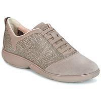 Cipők Női Rövid szárú edzőcipők Geox D NEBULA Tópszínű
