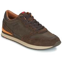 Shoes Férfi Rövid szárú edzőcipők Lloyd EDWIN Barna