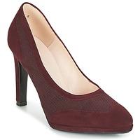 Cipők Női Félcipők Peter Kaiser HERNA Bordó
