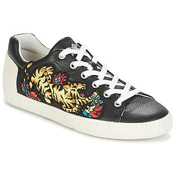 Shoes Női Rövid szárú edzőcipők Ash NIAGARA Fekete