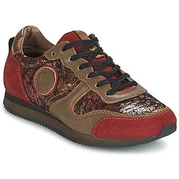 Shoes Női Rövid szárú edzőcipők Pataugas IDOL Piros / Barna