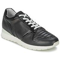 Cipők Női Rövid szárú edzőcipők Bikkembergs KATE 420 Fekete