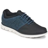 Cipők Férfi Rövid szárú edzőcipők Timberland BRADSTREET F/L OXFORD Tengerész