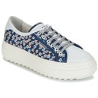 Cipők Női Rövid szárú edzőcipők Serafini SOHO Kék