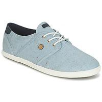 Cipők Rövid szárú edzőcipők Faguo CYPRESS COTTON Kék