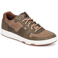 Cipők Férfi Rövid szárú edzőcipők Caterpillar LINE UP CANVAS Barna