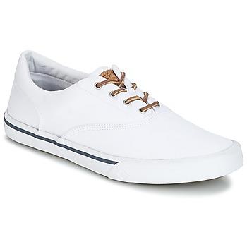 Cipők Férfi Rövid szárú edzőcipők Sperry Top-Sider STRIPER II CVO WASHED Fehér