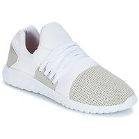 Cipők Férfi Rövid szárú edzőcipők Asfvlt AREA LUX Fehér / Szürke
