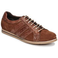 Cipők Férfi Rövid szárú edzőcipők So Size GOPINETTE Barna