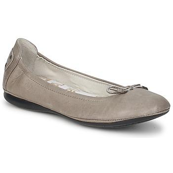 Cipők Női Balerina cipők / babák PLDM by Palladium MOMBASA CASH Szürke