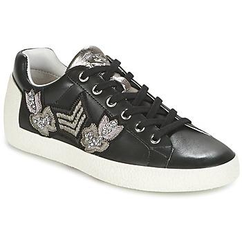 Cipők Női Rövid szárú edzőcipők Ash NAK-AR Fekete