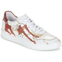 Cipők Női Rövid szárú edzőcipők Felmini CRASKY Fehér / Piros